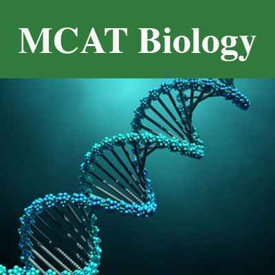 MCAT Biological & Biochemical Foundations Of Living Systems Section